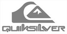Quiksilver logo sticker